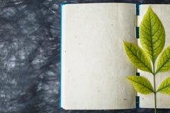 Papier de carnet avec la texture, feuille jaune Image libre de droits