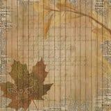 Papier de collage de fond de vintage - Autumn Leaf Flourish - - automne - neutre affligé - papier de Digital Illustration de Vecteur