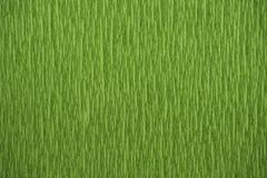 Papier de crêpe naturel de couleurs vertes de textures bout droit de 200 pour cent Photos stock