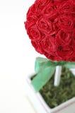 Papier de crêpe Rose Topiary Image libre de droits