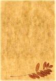 Papier de cru avec des centrales Photos libres de droits