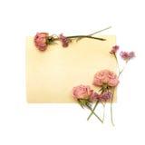 Papier de cru, roses et fleurs violettes images stock