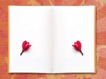 Papier de l'espace libre et fleur rouge de frangipani Photo libre de droits