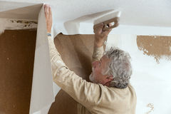 Papier de plafond Image stock