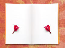 Papier des freien Platzes und rote Frangipaniblume Lizenzfreies Stockfoto