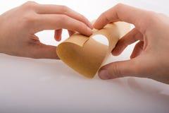 Papier, eine Herzform bildend lizenzfreies stockfoto