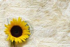 Papier emietté avec la fleur Photo stock