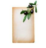 Papier et branche d'olivier Photographie stock