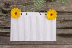 Papier et fleurs Image stock