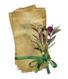 papier grunge avec le bouquet et la proue verte images libres de droits