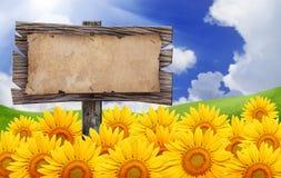 Papier grunge avec le signe de panneau en bois. Image stock