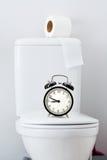 Papier hygiénique sur le réservoir blanc de toilette images stock