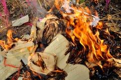 Papier-monnaie brûlant images stock