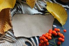 Papier naturel brûlé pour le fond entouré par les feuilles d'automne jaunes photo libre de droits