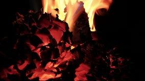 Papier pali w ogieniu zbiory wideo