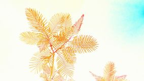 Papier peint d'arbre Images libres de droits