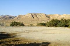 Papier peint de désert de l'Israël Photos stock