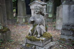 Papier peint de fond de pierre tombale de cimetière de Jewisch Photos libres de droits