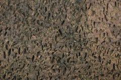 Papier peint de fond de modèle de texture de pierre de nature de détail image libre de droits