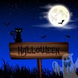 Papier peint de nuit de Halloween avec le chat et la pleine lune Photo stock