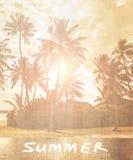 Papier peint de plage de vintage Photos stock