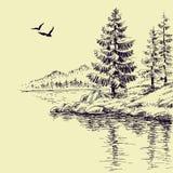 Papier peint de rivage de lac Photo libre de droits