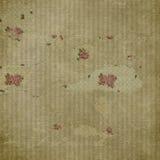 Papier peint de Rose et de filet Image stock