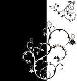 Papier peint floral de son de duo Photos libres de droits