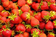 Papier peint frais de groupe de fraise photographie stock libre de droits
