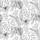 Papier peint gai de modèle de plage des feuilles vert-foncé tropicales des palmiers et de l'oiseau de fleurs du plumeria de strel illustration stock