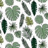 Papier peint gai de modèle de plage des feuilles vert-foncé tropicales des palmiers et de l'oiseau de fleurs du plumeria de strel illustration de vecteur