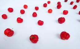 Papier peint rouge d'art d'Avium de Prunus Images libres de droits