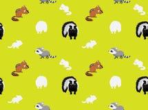 Papier peint sans couture 2 d'animaux de mouffette de raton laveur de tamia Photo libre de droits