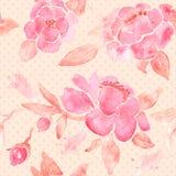 Papier peint sans couture d'aquarelle avec des fleurs de pivoine Photographie stock libre de droits