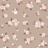 Papier peint sans couture floral Photos libres de droits