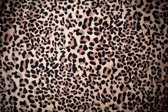 Papier peint texturisé de peau décorative de léopard Photo libre de droits