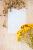Papier pour l'inscription et l'herbe médicinale Photo stock
