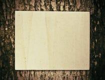Papier sur l'arbre Images stock