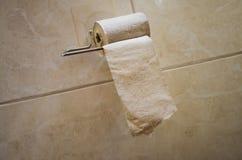Papier toaletowy w rolce w toaletowym właścicielu obraz royalty free