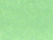 Papier vert clair Photos libres de droits