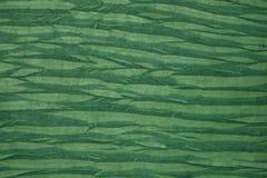 Papier vert de spécialité Image libre de droits
