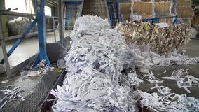 Papierafval recyclingsmolen stock footage