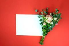 Papierblatt und Rose stockbild
