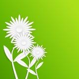 Papierblume des abstrakten weißen Gerbera Lilien des Tales und der Hyazinthen auf einem grünen Hintergrund der Blätter Vektor Abbildung