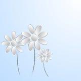 Papierblumen auf weißem Hintergrund Lizenzfreies Stockfoto