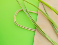 Papiereinkaufstasche eco flache Position Draufsicht mit krautigen Pflanzen auf gr?nem Hintergrund, null ?bersch?ssigem ?kologieko lizenzfreie stockbilder