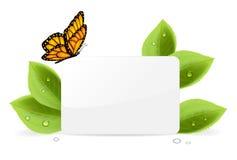 Papierkarte mit Schmetterling Stockbilder