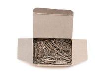 Papierklammern im Kasten. Stockfotografie
