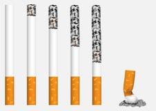 papieros royalty ilustracja