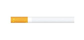 papieros pojedynczy Fotografia Stock